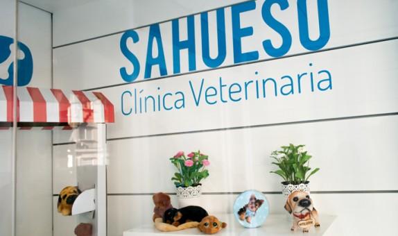 sahueso-instalaciones3